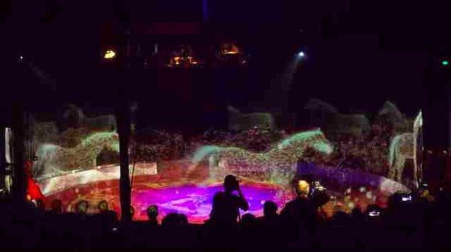 circus roncalli animals hologram
