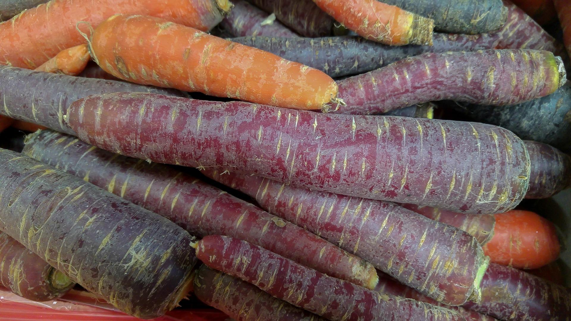 carrots-2289463_1920
